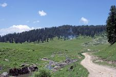 Free A Path Going Into A Forest In Kashmir. Royalty Free Stock Images - 13826439