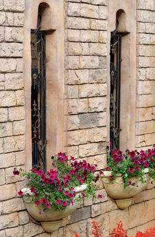 Free Building Windows And Flower Parterre Royalty Free Stock Image - 13827356
