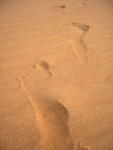Free Footprints On The Sand Stock Images - 13829374