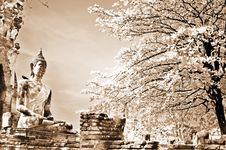 Free Monuments Of Buddah, Royalty Free Stock Images - 13830139