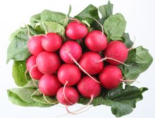 Free Bunch Of Radishes Stock Photo - 13830490