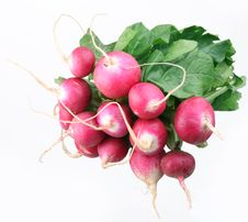 Free Bunch Of Radishes Stock Photo - 13830540