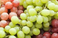 Red And Green Fresh Grapes Royalty Free Stock Photo