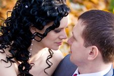 Free Bride And Groom Royalty Free Stock Photography - 13832867