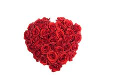 Free Rose Heart Stock Photography - 13832932
