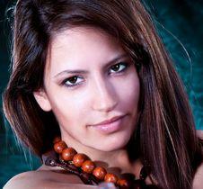 Free Young Beautiful Elegant  Brunette Stock Photo - 13833620