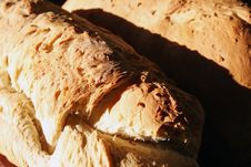 Free Fresh Bread Royalty Free Stock Images - 13836439