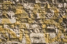 Free Yellow Over Bricks Stock Images - 13836944