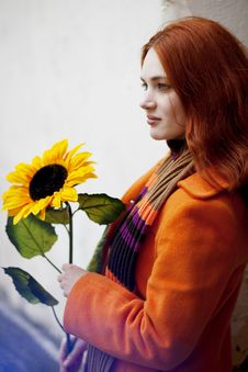 Free Pretty Girl Walking With A Sunflower City Stock Photo - 13837820