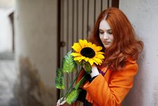 Free Pretty Girl Walking With A Sunflower City Stock Photos - 13837923
