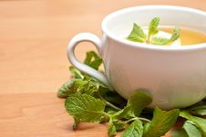 Free Tea With Mint And Lemon Stock Images - 13837924