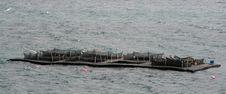 Free Fish Farming Nets Stock Image - 13838281