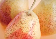 Free Group Of Pears Stock Photos - 13838653