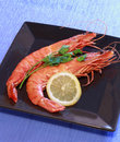 Free Shrimps Stock Photography - 13848912
