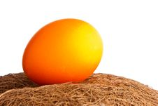 Free Colored Egg In The Straw Stock Images - 13840074