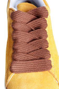 Free Shoelace Royalty Free Stock Photo - 13841125