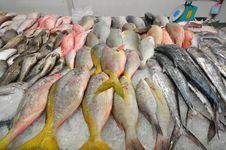 Raw Fishes In The Market Royalty Free Stock Photo