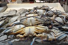 Free Flower Crabs In The Wet Market Royalty Free Stock Photos - 13841728