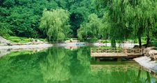 Free Lake In Summer Royalty Free Stock Photo - 13843185
