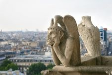 Free Gargoyle Of Notre Dame De Paris Royalty Free Stock Photo - 13844055