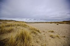 Free Dunes Of Texel Royalty Free Stock Images - 13845819