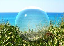 Free Glass Ball. Royalty Free Stock Photo - 13846375