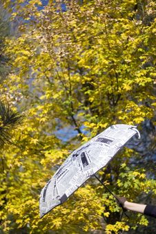 Free Umbrella And Autumn Leaves On Background Royalty Free Stock Photo - 13846835