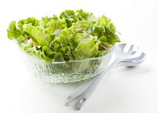 Free Salad Stock Photos - 13848433