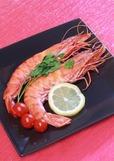 Free Shrimps Stock Photography - 13849102