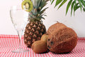 Free Pineapple, Cocos, Kiwi And Mineral Water Stock Images - 13853294