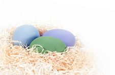 Free Colored Eggs In Nest Stock Image - 13854461