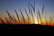 Sundown Royalty Free Stock Photography