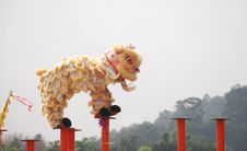 Free Lion Dance Royalty Free Stock Image - 13856976