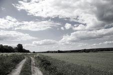Free Summer Rural Landscape Royalty Free Stock Photos - 13859358