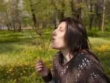 Free Beautiful Woman Blowing Dandelion Royalty Free Stock Photo - 13860695