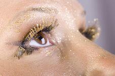 Free Golden Eye Royalty Free Stock Photo - 13861085