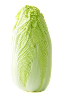 Free Lettuce Stock Photography - 13861432