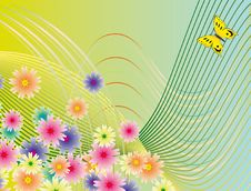 Free Butterfly On Bright Flowers Stock Images - 13861624