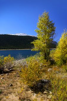 Free Autumn In Colorado Stock Images - 13862784