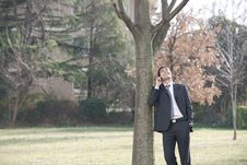 Free Businessman On The Phone Royalty Free Stock Image - 13863436