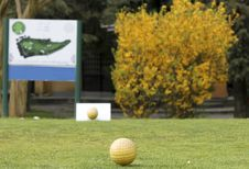 Golf Court Royalty Free Stock Photography