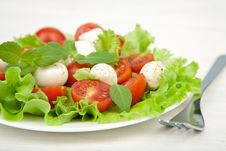 Free Salad With Tomatoes And Mozzarella Royalty Free Stock Images - 13864349