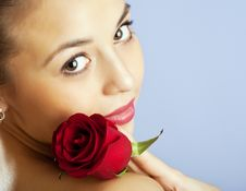 Free Studio Portrait Of Sensual  Woman With Rose Stock Images - 13864374