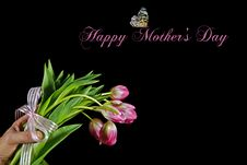 Free For Mom Stock Photo - 13865050