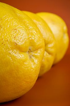 Free Grapefruit Stock Photo - 13867970