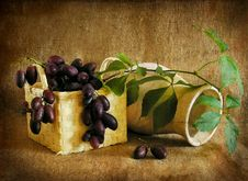 Free Grapes In A Basket And A Vase, A Still-life. Royalty Free Stock Image - 13868726