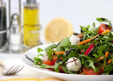 Free Mixed Green Salad Stock Photos - 13868763