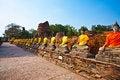 Free Buddha Statues At The Temple Of Wat Yai Chai Mongk Royalty Free Stock Photography - 13871607