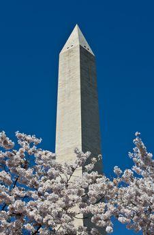 Free Washington Monument On Sunny Day Stock Photos - 13870473
