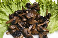 Free Grilled Mushrooms Stock Images - 13872974
